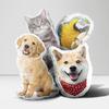 Plush pet throw pillow