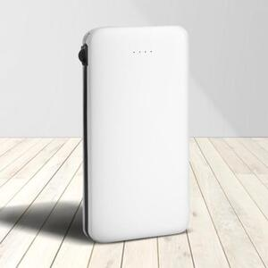 8000/10000mAh Power Bank with Lightning and Type-C Ports