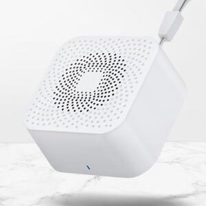 TWS Mini Bluetooth Speaker