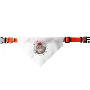 个性化三角宠物头围巾 (大)