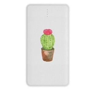 Cactus undefined