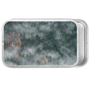 forest Metal Slide Top Tin