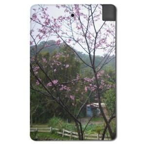 2500mah 行動電源-櫻花樹