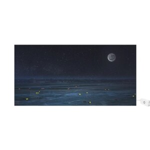Moonlight Rectangle Light Box