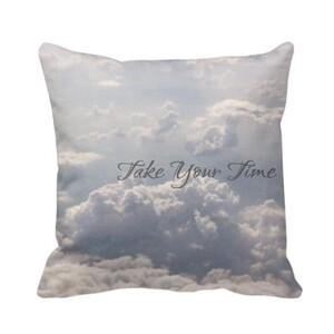 """Take Your Time"" Pillow 16'x16'"
