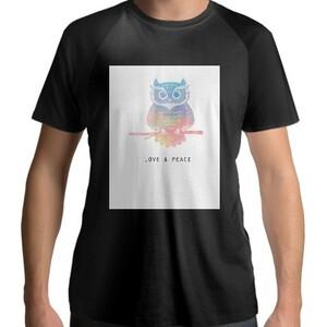 Men's Raglan T-Shirt