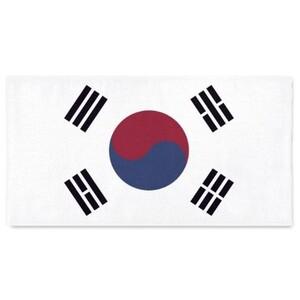"""韓國 Beach Towel 58""""x28"""""""