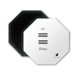 Ying Yang 01 Froce Octagon Magnet