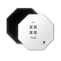 Ying Yang 02 Field Octagon Magnet