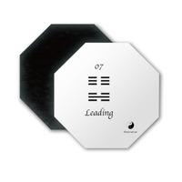 Ying Yang 07 Leading Octagon Magnet