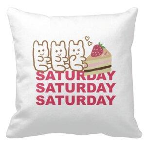 Saturday Bear 16x16吋細毛絨抱枕