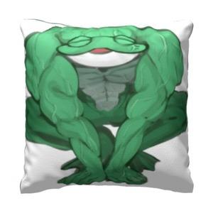 青蛙 16x16吋細毛絨抱枕