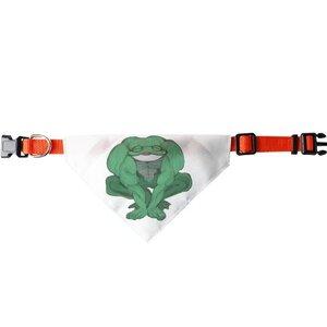 青蛙三角寵物頭圍巾 (大)