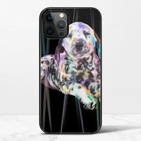 狗iPhone 12 Pro 極光鋼化玻璃殼