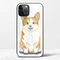 期待。快樂iPhone 12 Pro Max 極光鋼化玻璃殼