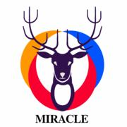 Miracle Store