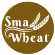 Small Wheat