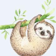Sloths Collection